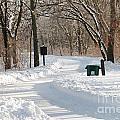 Farnsworth Park Path by Jack Schultz