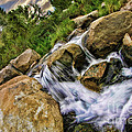 Fast Moveing Stream by Blake Richards