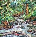 Fast Water Wildwood Park by Kendall Kessler