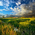 Fathers Day by Phil Koch