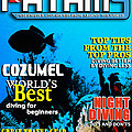 Fathms Faux Magazine Cover by Mike Nellums