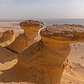 Fayum Desert Scene by Michael Brewer