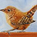 Feathered by Nancy Merkle