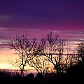 February's Dramatic Sunrise by Maria Urso