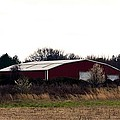 February's Red Barn by Maria Urso