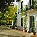 Federico Garcia Lorca Home by Guido Montanes Castillo