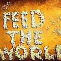 Feed The World by Brian Raggatt