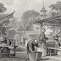 Feeding Silkworms And Sorting Cocoons by Thomas Allom