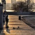 Feeding The Birds At Dawn by Bill Cannon