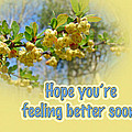 Feel Better Soon Greeting Card - Barberry Blossoms by Mother Nature