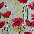 Feel The Summer - Poppies by Ismeta Gruenwald