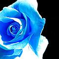 Feeling Blue by Marianna Mills