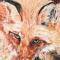Feeling Foxy by Cori Solomon