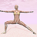 Female Musculature Performing Warrior by Elena Duvernay