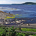 Fence Along Rocky Harbour-nl by Ruth Hager