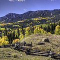 Fence And Fall Colors by David Waldrop