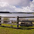 Fence At Kielder Water by David Head