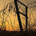 Fence At Sunset I by Marco Oliveira