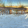 Fence At The Beach In St Augustine Florida by Michelle Constantine