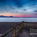Fence By The Salt Flats by Mitch Johanson