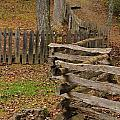 Fence In Autumn by Dan Sproul