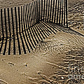Fence Line by Tom Gari Gallery-Three-Photography