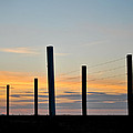 Fence Posts At Sunset by Wayne King