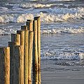 Fence Posts Into The Sea by Allen Sheffield