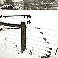 Fence Pulls In Winter by Marilyn Hunt