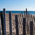 Fence Sand And Ocean by Eryn Carter