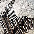 Fence Shadows by John Rizzuto