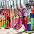 Fenced by Chuck  Hicks