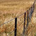 Fenced Off by Kaleidoscopik Photography