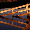 Fenced Reflection by Bill Gallagher