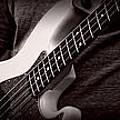 Fender Bass by Bob Orsillo