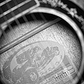 Fender Guitar Black And White 2 by Glenn Gordon