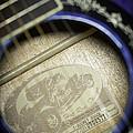 Fender Hot Rod Design Guitar 2 by Glenn Gordon
