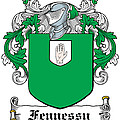 Fennessy Coat Of Arms Irish by Heraldry