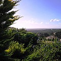 Ferguson Valley Landscape by Vickie Roy-Sneddon