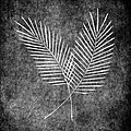 Fern Simple by Brenda Bryant