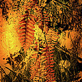 Ferns In Fall by Nina Fosdick