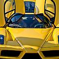 Ferrari Enzo by Jill Reger
