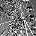 Ferris Wheel In Black And White by Susan Cliett