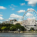 Ferris Wheel On The Brisbane River by Parker Cunningham