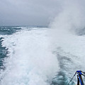 Ferry Wake 2 by Susie Peek