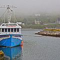 Ferryland Harbour-nl by Ruth Hager