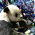 Festive Panda by Mariola Bitner