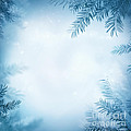 Festive Winter Background by Mythja  Photography