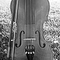 Fiddle And Bow Bw by Kerri Mortenson