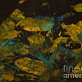Field At Night by Fereshteh Stoecklein
